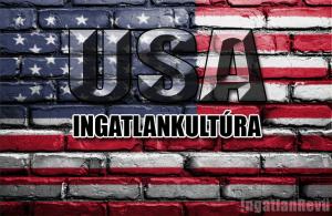 Ingatlanközvetítés USA